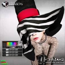 _My head mesh hat with hud